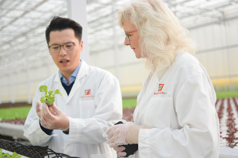 Mieiny-Prins-of-Priva-in-a-greenhouse-in-China-again