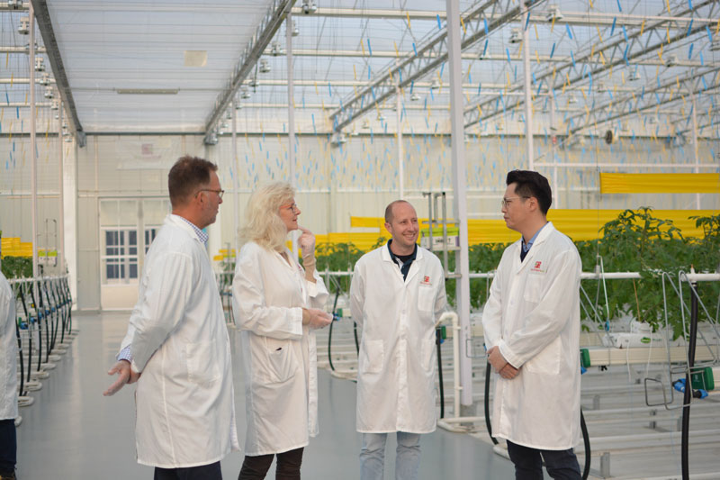 Mieiny-Prins-of-Priva-in-a-greenhouse-in-China