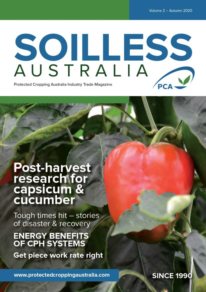 Soilless Magazine Volume 2 2020 Teaser